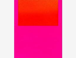 Schwerpunkt: Pink