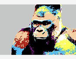 Andys King Kong