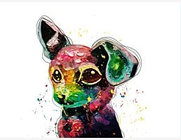 PrinceZZ-Dog