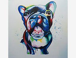 Buntdogge