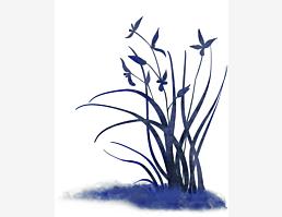 Blaublumig XI