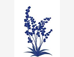 Blaublumig IX