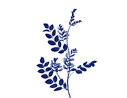 Blaublumig VII