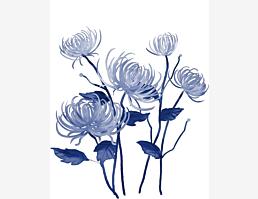 Blaublumig VI
