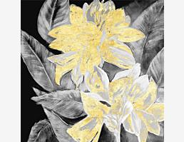 Kohlblättergold