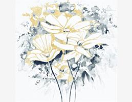 Kohlstielgoldblumen