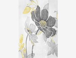 Kohlblütenblumen