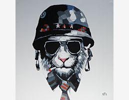 CatCaptain